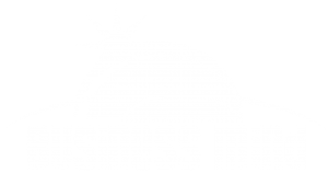 Business Mind FZE
